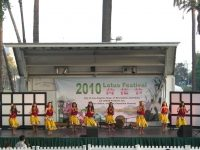 2010-lotus-festival